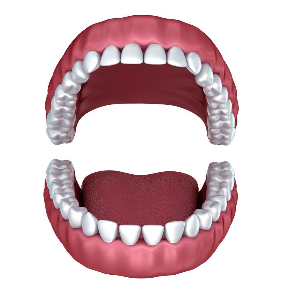 Dentist in 60506